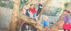 Pine Street Kindergarten Open Day 2019